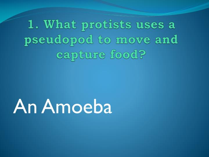 1 what protists uses a pseudopod to move and capture food