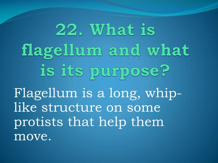 22. What is flagellum and what is its purpose?