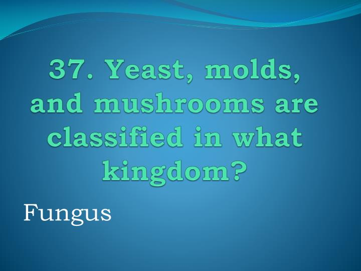 37. Yeast, molds, and mushrooms are classified in what kingdom?