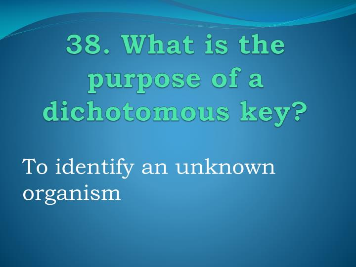 38. What is the purpose of a dichotomous key?