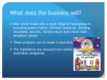 what does the business sell