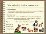 what are the four levels of measurement2