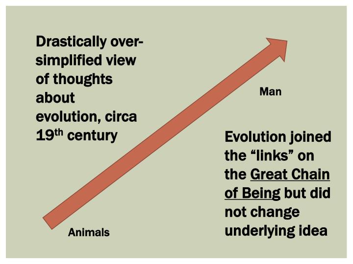 Drastically over-simplified view of thoughts about evolution, circa 19