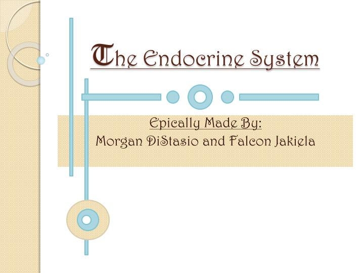 t he endocrine system