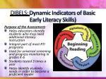 dibels dynamic indicators of basic early literacy skills