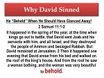 why david sinned1
