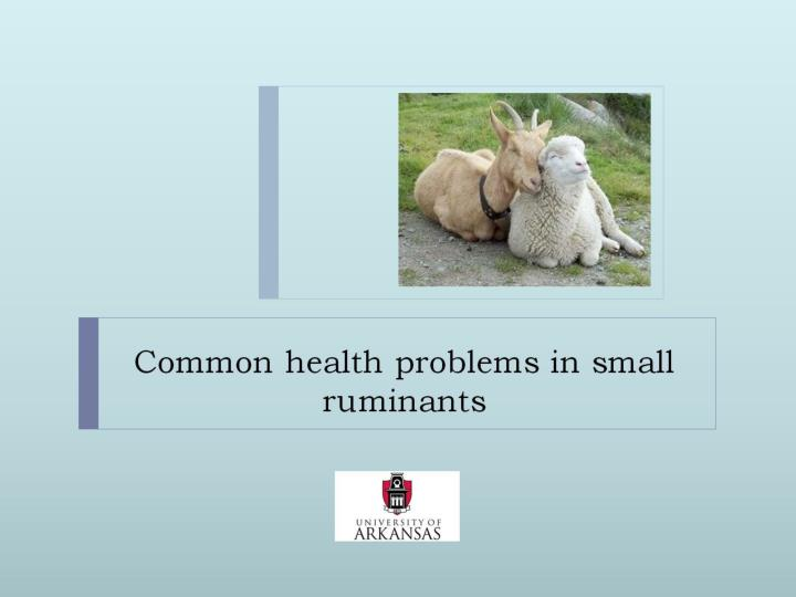 PPT - Common health problems in small ruminants PowerPoint ...