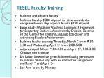 tesel faculty training