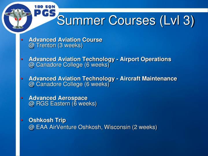 Summer Courses (Lvl 3)