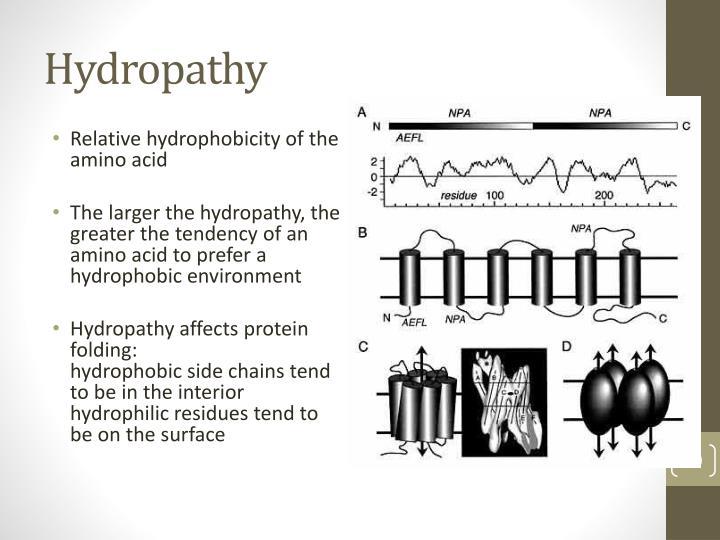 Hydropathy