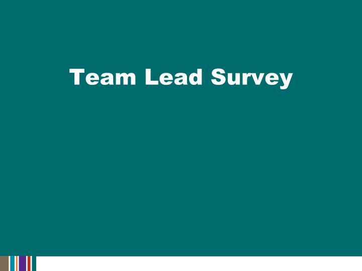 Team Lead Survey