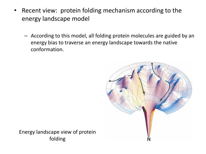 Energy landscape view of protein folding
