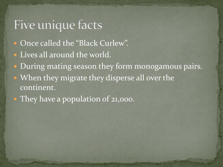 Five unique facts