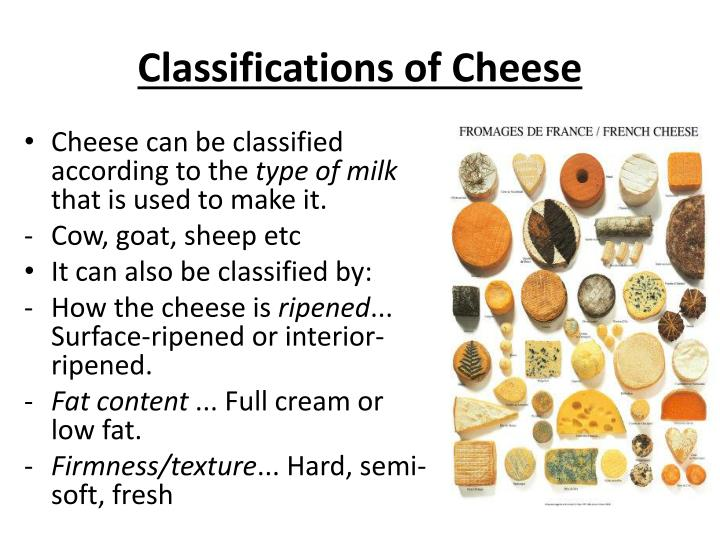 Classifications of Cheese