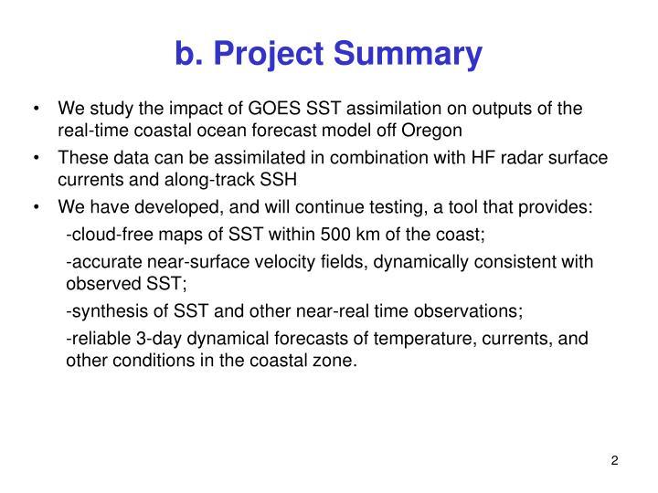 B project summary
