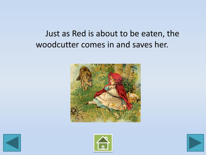 Just as Red is about to be eaten, the woodcutter comes in and saves her.