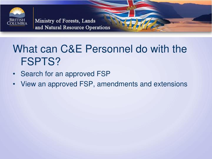 What can C&E Personnel do with the FSPTS?