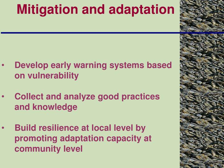 Mitigation and adaptation