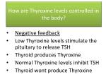 how are thyroxine levels controlled in the body