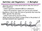 switches and regulators a metaphor