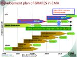 development plan of grapes in cma