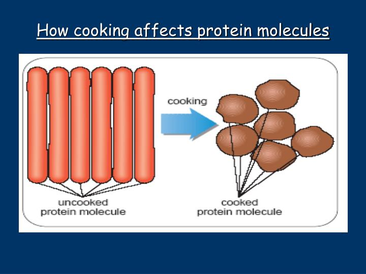 How cooking affects protein molecules