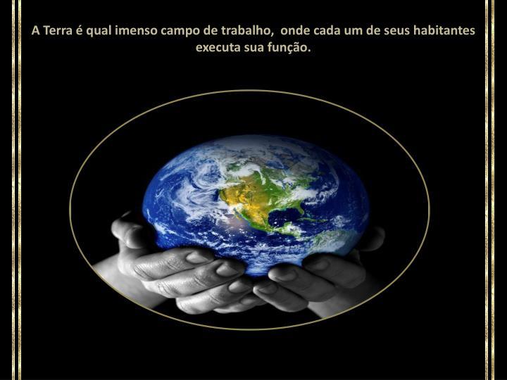 A Terra é qual imenso campo de trabalho,  onde cada um de seus habitantes executa sua função.