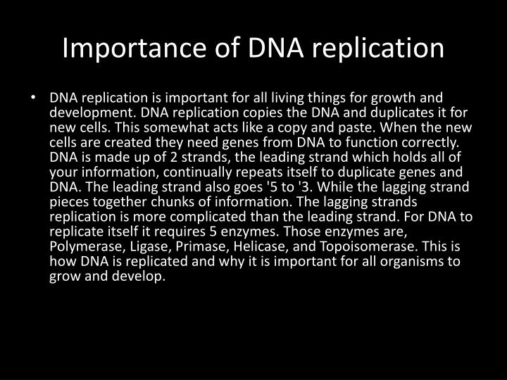 Importance of DNA replication
