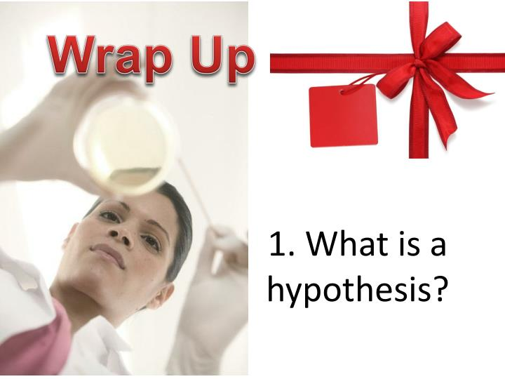 1. What is a hypothesis?