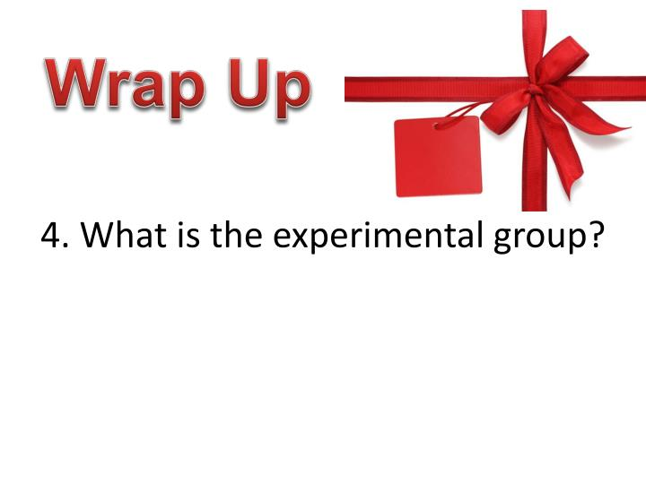 4. What is the experimental group?