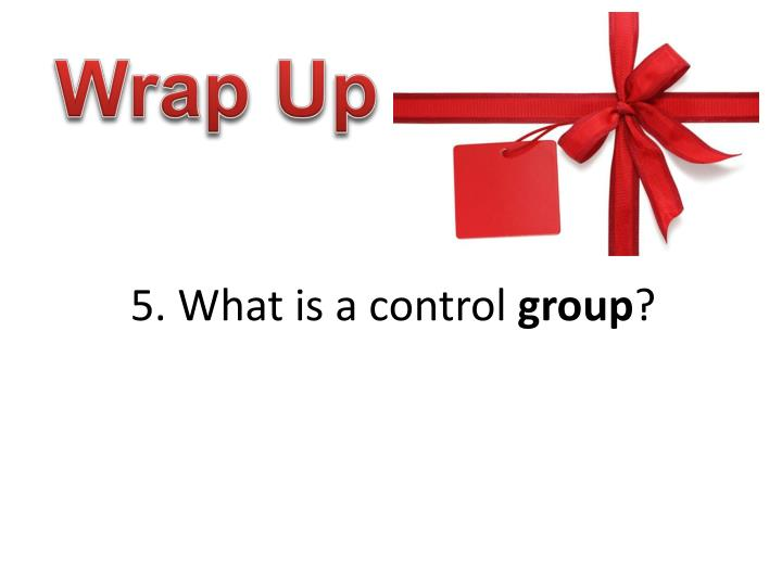 5. What is a control