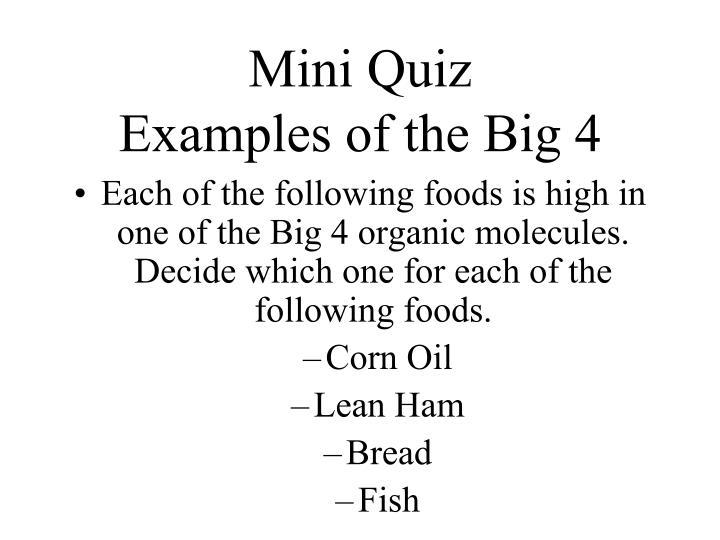 Mini Quiz