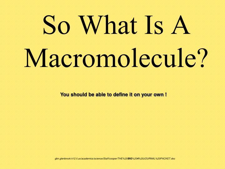 So What Is A Macromolecule?