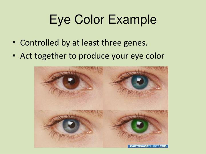 Eye Color Example