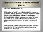 satellite accounts for food balances safb