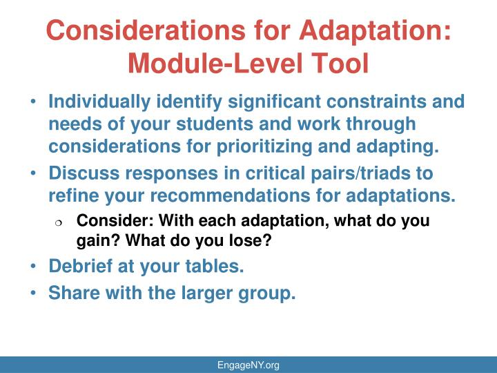 Considerations for Adaptation: Module-Level Tool