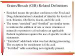 grains breads g b related definitions1
