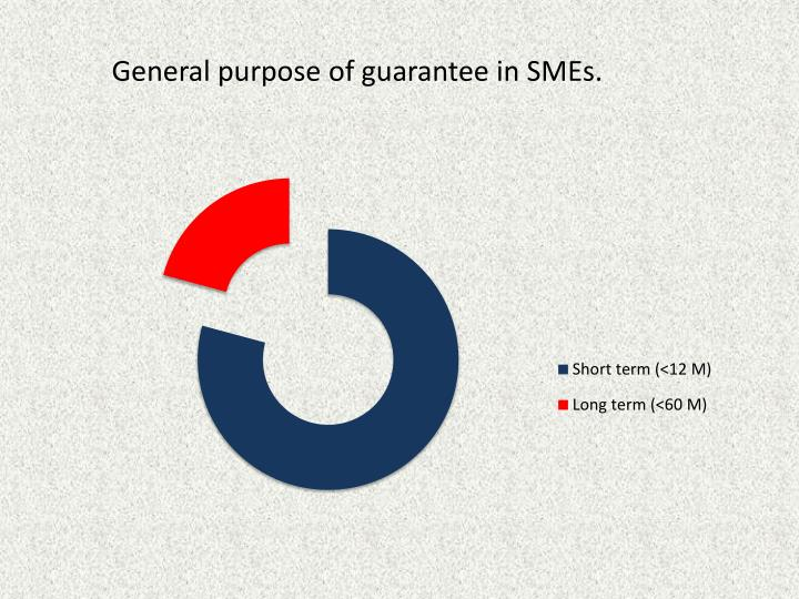 General purpose of guarantee in SMEs.