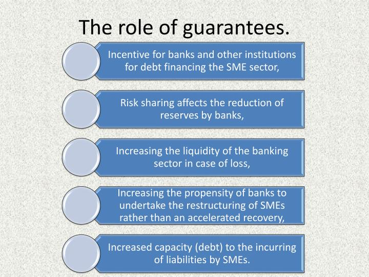The role of guarantees.