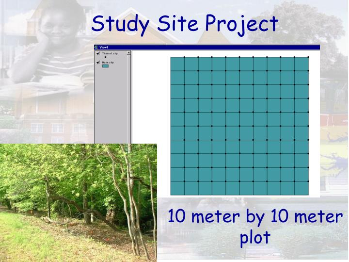 Study Site Project