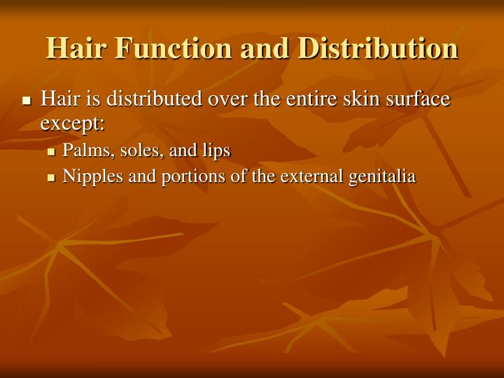 Hair Function and Distribution