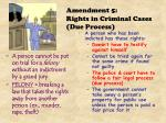 amendment 5 rights in criminal cases due process