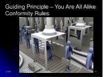 guiding principle you are all alike conformity rules