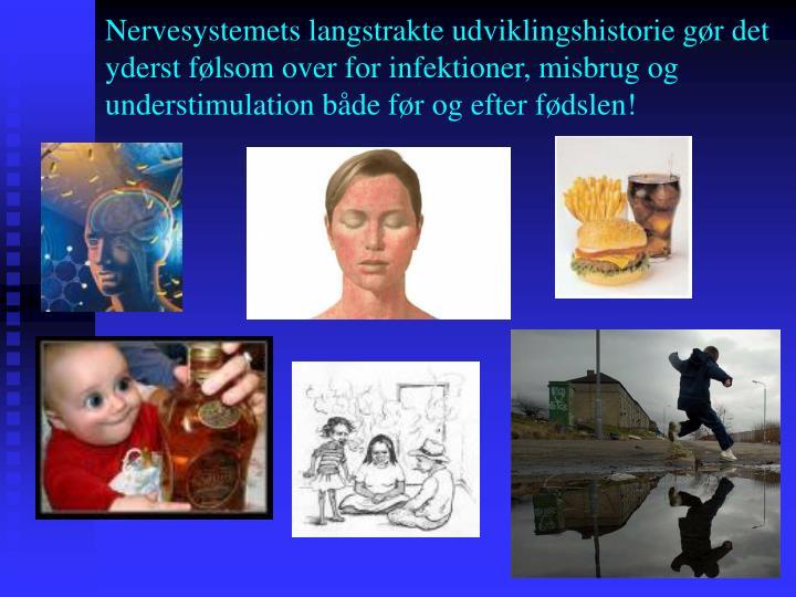 Nervesystemets langstrakte udviklingshistorie gør det yderst følsom over for infektioner, misbrug og understimulation både før og efter fødslen!