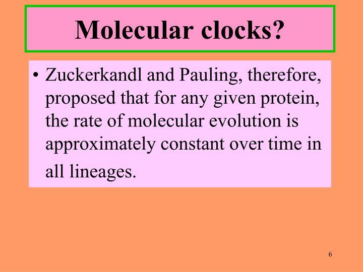 Molecular clocks?