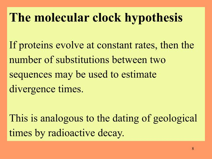 The molecular clock hypothesis