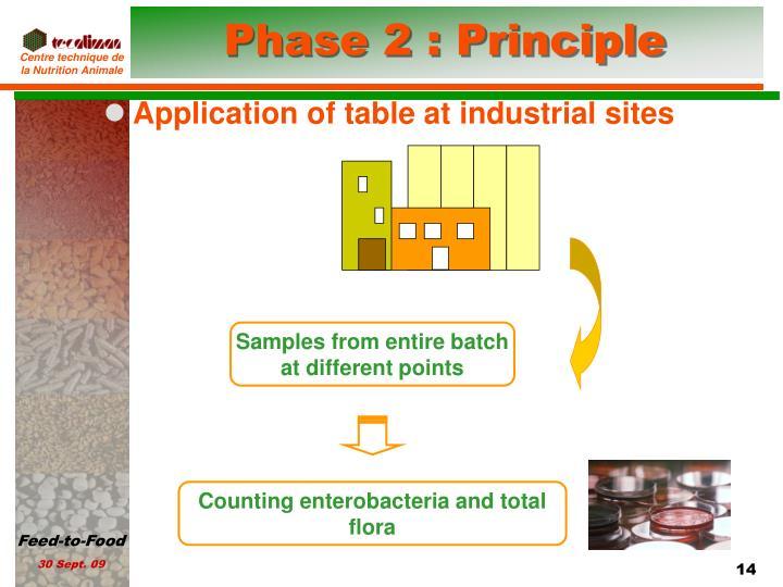 Phase 2 : Principle