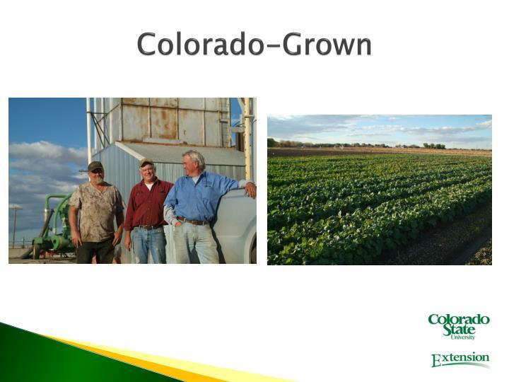 Colorado-Grown