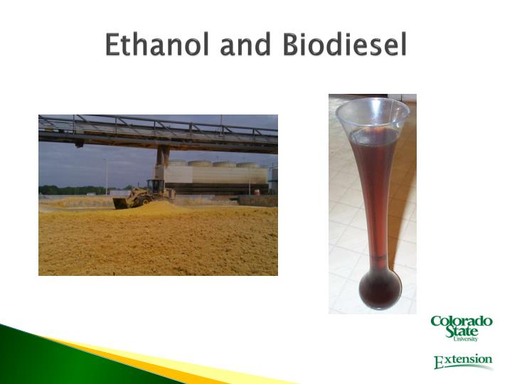 Ethanol and biodiesel