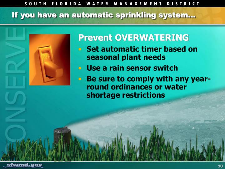 If you have an automatic sprinkling system…